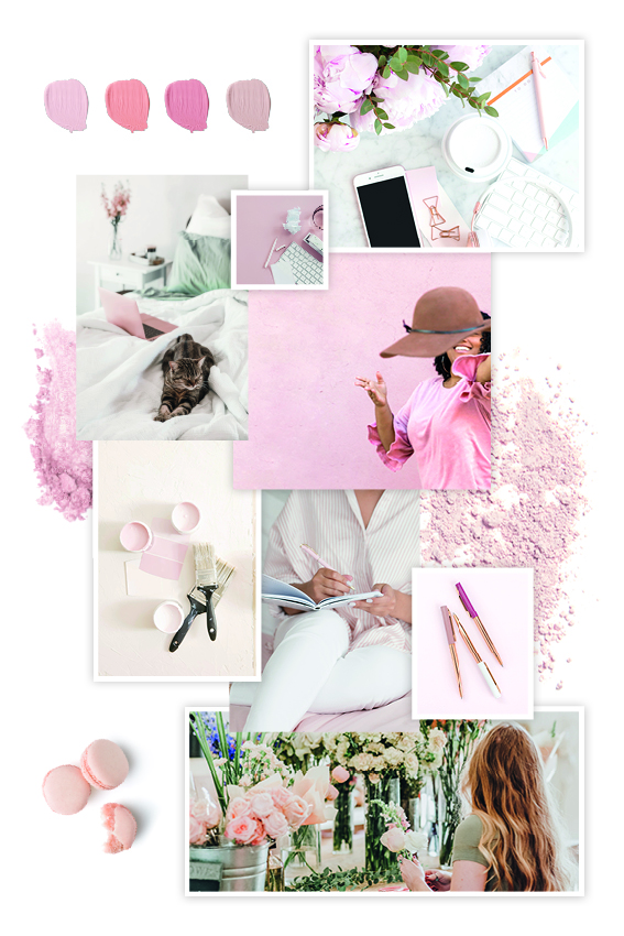 Rosa Moodboard Aquarell Kollektion zum Verlieben