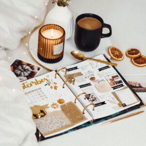 Bullet Journal Seiten im Ringbuch als Inspiration